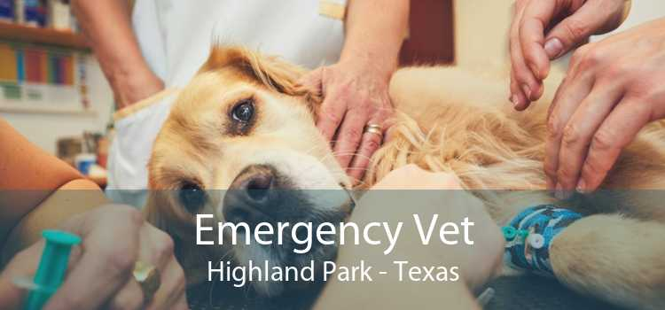 Emergency Vet Highland Park - Texas