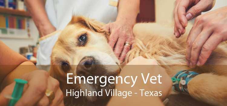Emergency Vet Highland Village - Texas