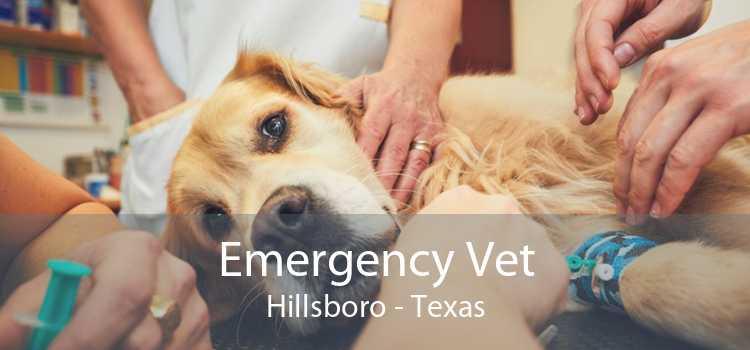 Emergency Vet Hillsboro - Texas