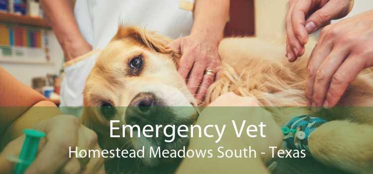 Emergency Vet Homestead Meadows South - Texas