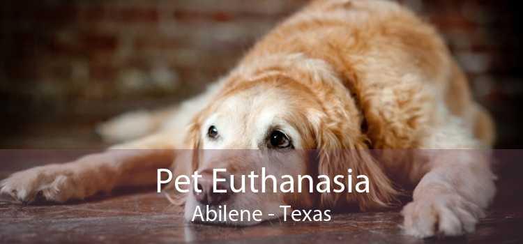 Pet Euthanasia Abilene - Texas