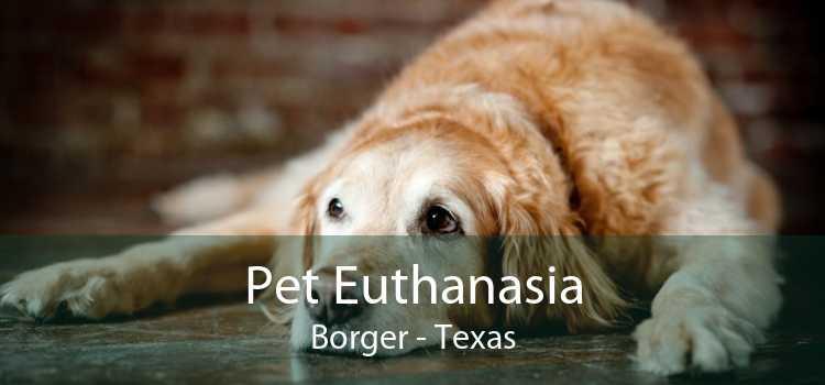 Pet Euthanasia Borger - Texas
