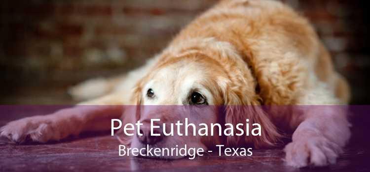 Pet Euthanasia Breckenridge - Texas