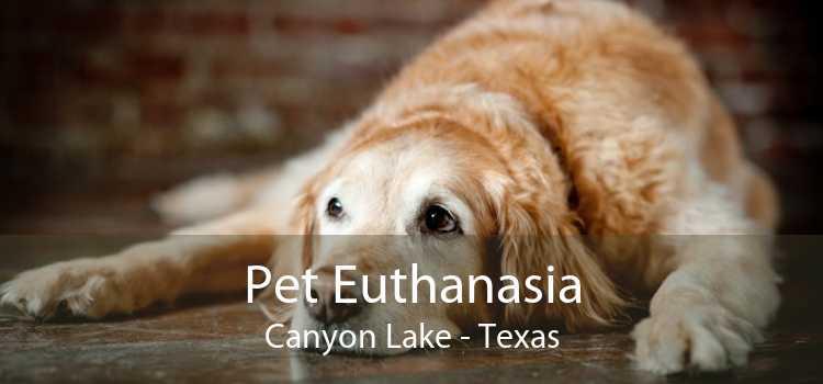 Pet Euthanasia Canyon Lake - Texas