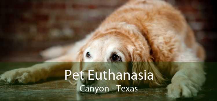 Pet Euthanasia Canyon - Texas