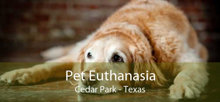 Pet Euthanasia Cedar Park - Texas