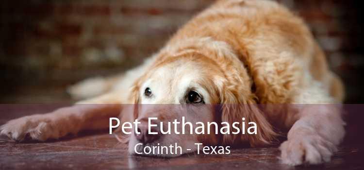 Pet Euthanasia Corinth - Texas