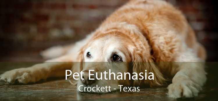Pet Euthanasia Crockett - Texas