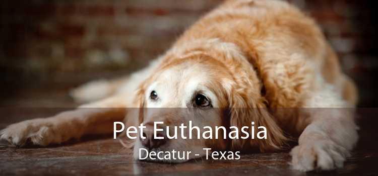 Pet Euthanasia Decatur - Texas