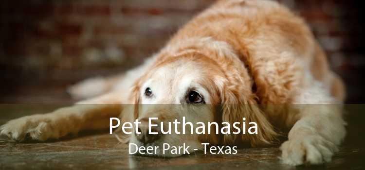 Pet Euthanasia Deer Park - Texas