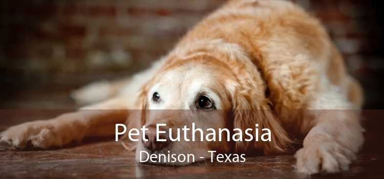 Pet Euthanasia Denison - Texas