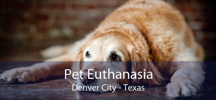 Pet Euthanasia Denver City - Texas