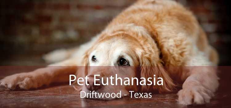 Pet Euthanasia Driftwood - Texas