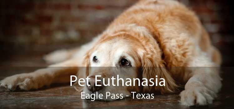 Pet Euthanasia Eagle Pass - Texas