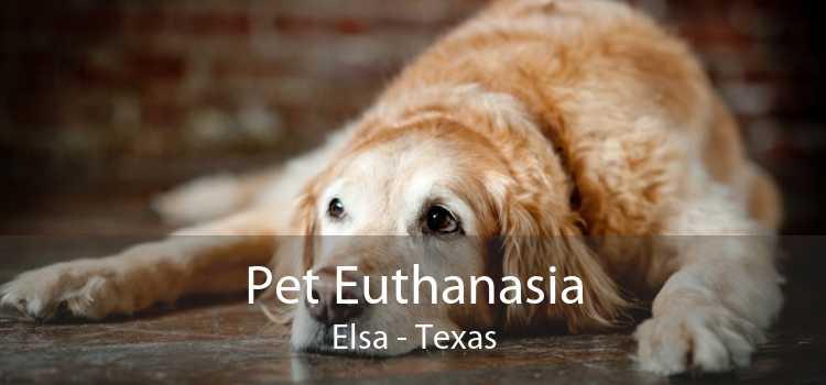 Pet Euthanasia Elsa - Texas