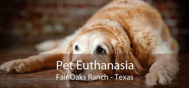 Pet Euthanasia Fair Oaks Ranch - Texas