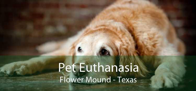 Pet Euthanasia Flower Mound - Texas
