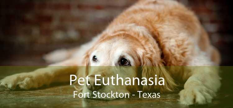 Pet Euthanasia Fort Stockton - Texas