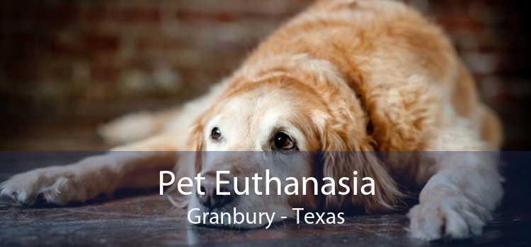Pet Euthanasia Granbury - Texas