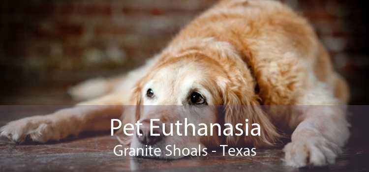 Pet Euthanasia Granite Shoals - Texas