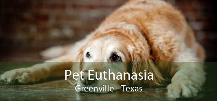 Pet Euthanasia Greenville - Texas