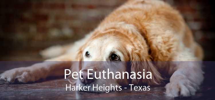 Pet Euthanasia Harker Heights - Texas