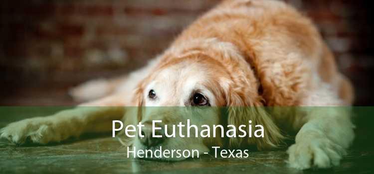 Pet Euthanasia Henderson - Texas
