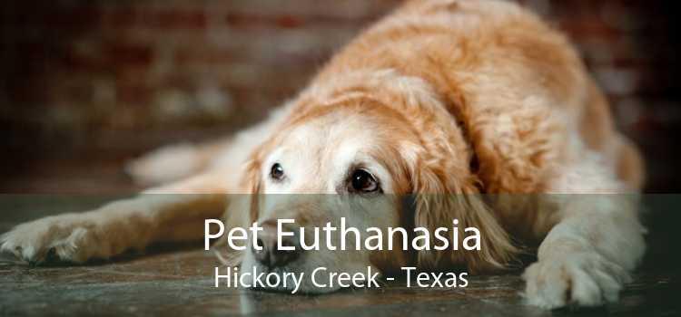 Pet Euthanasia Hickory Creek - Texas