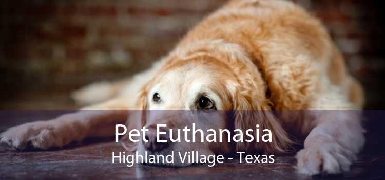 Pet Euthanasia Highland Village - Texas
