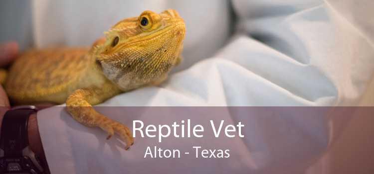 Reptile Vet Alton - Texas