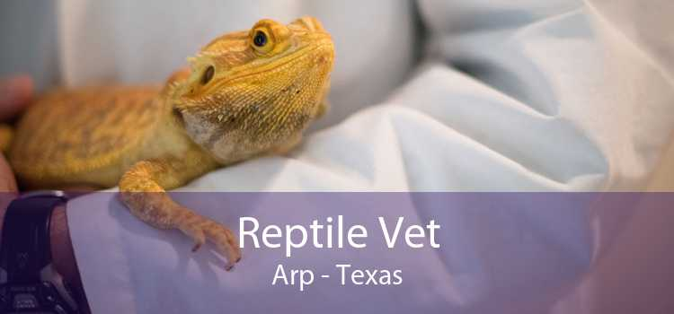 Reptile Vet Arp - Texas