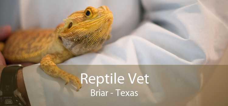 Reptile Vet Briar - Texas