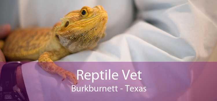 Reptile Vet Burkburnett - Texas