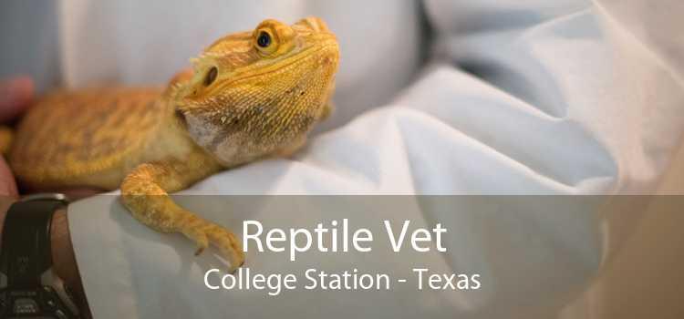 Reptile Vet College Station - Texas