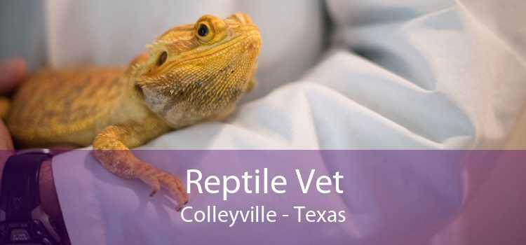 Reptile Vet Colleyville - Texas