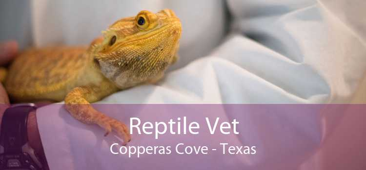Reptile Vet Copperas Cove - Texas