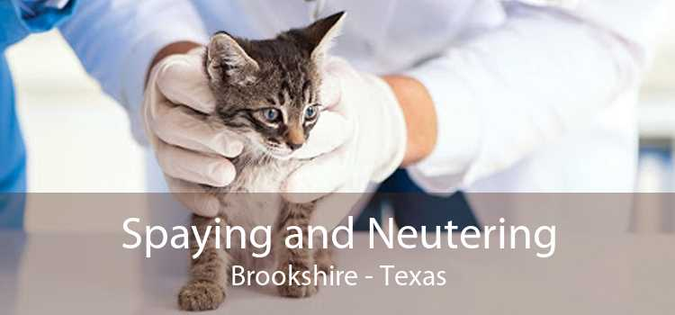 Spaying and Neutering Brookshire - Texas