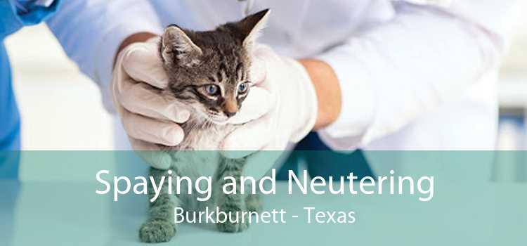 Spaying and Neutering Burkburnett - Texas