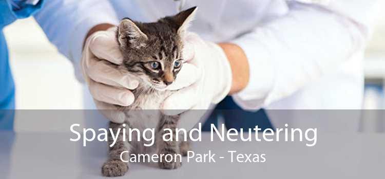 Spaying and Neutering Cameron Park - Texas