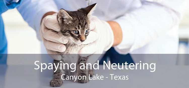 Spaying and Neutering Canyon Lake - Texas