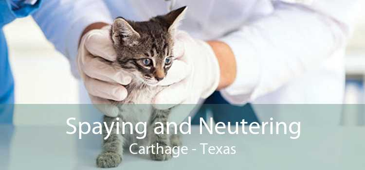 Spaying and Neutering Carthage - Texas