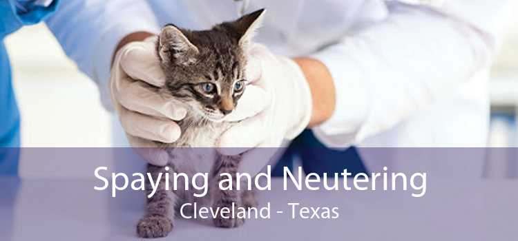 Spaying and Neutering Cleveland - Texas