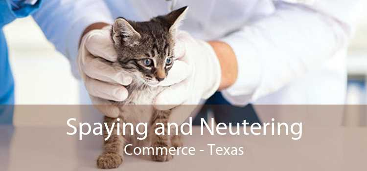 Spaying and Neutering Commerce - Texas