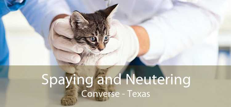 Spaying and Neutering Converse - Texas