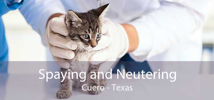 Spaying and Neutering Cuero - Texas