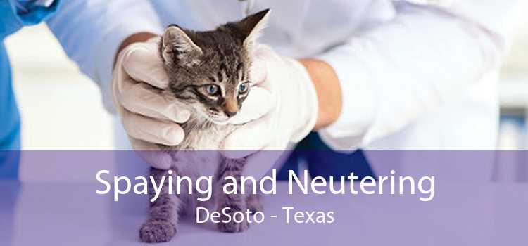 Spaying and Neutering DeSoto - Texas