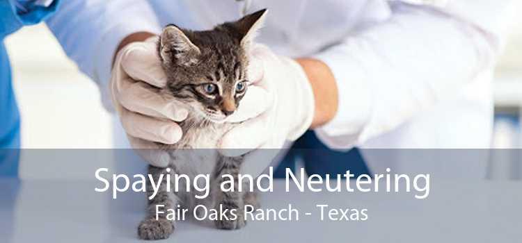 Spaying and Neutering Fair Oaks Ranch - Texas