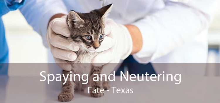 Spaying and Neutering Fate - Texas