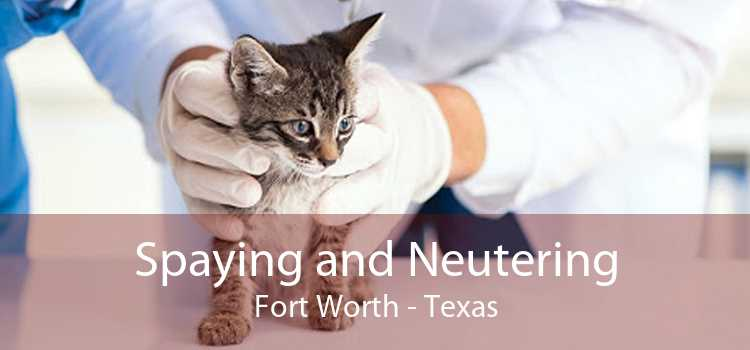Spaying and Neutering Fort Worth - Texas