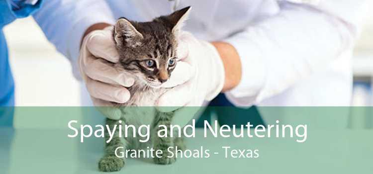 Spaying and Neutering Granite Shoals - Texas